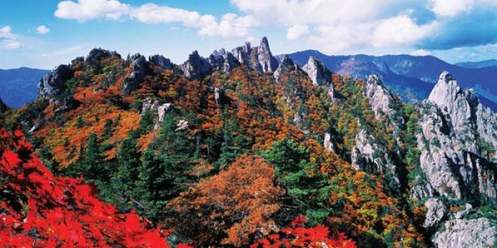 Lokasi Syuting Drama Korea yang Wajib Dikunjungi Saat Musim Gugur